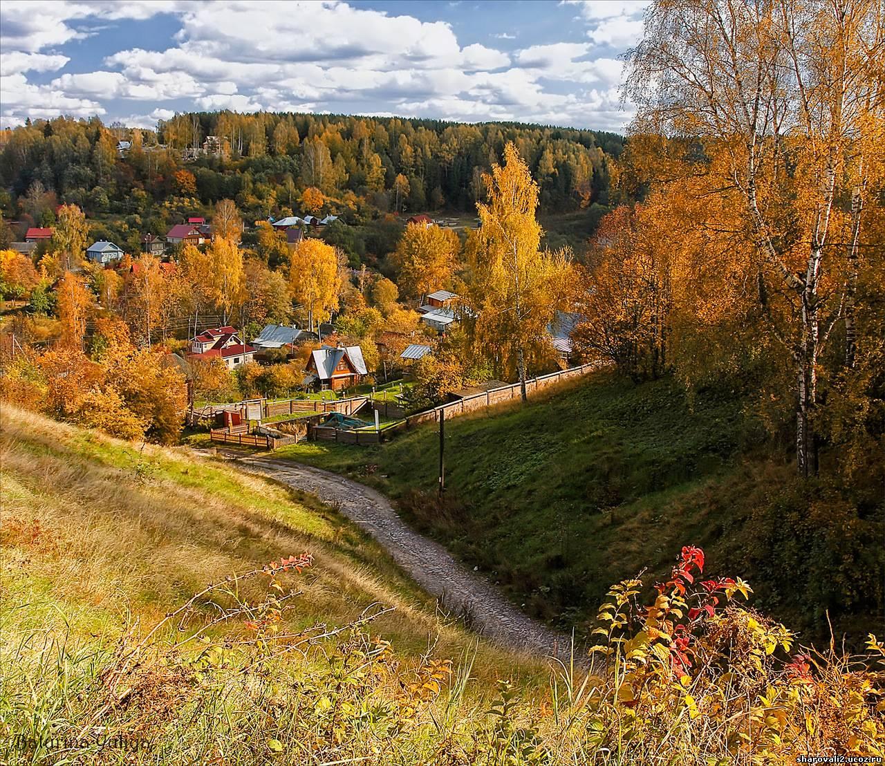 Золотая осень фото яндекс 2